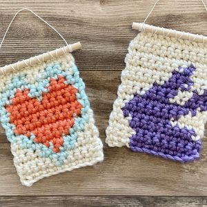 mini crochet wall hanging